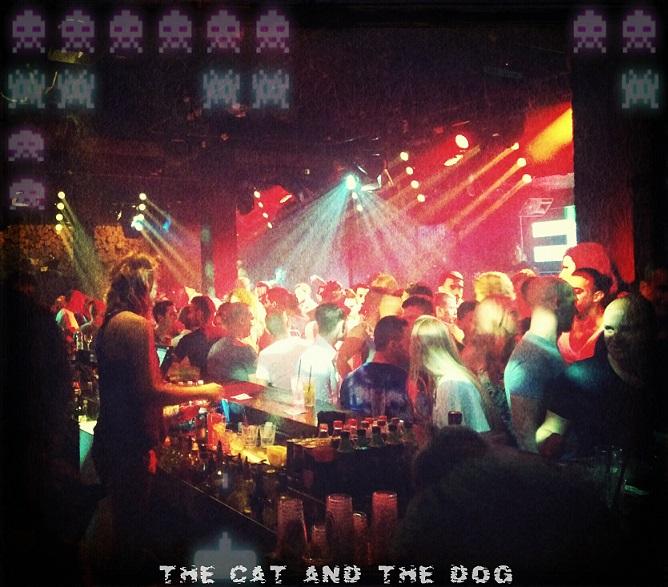 Cat-n-Dog