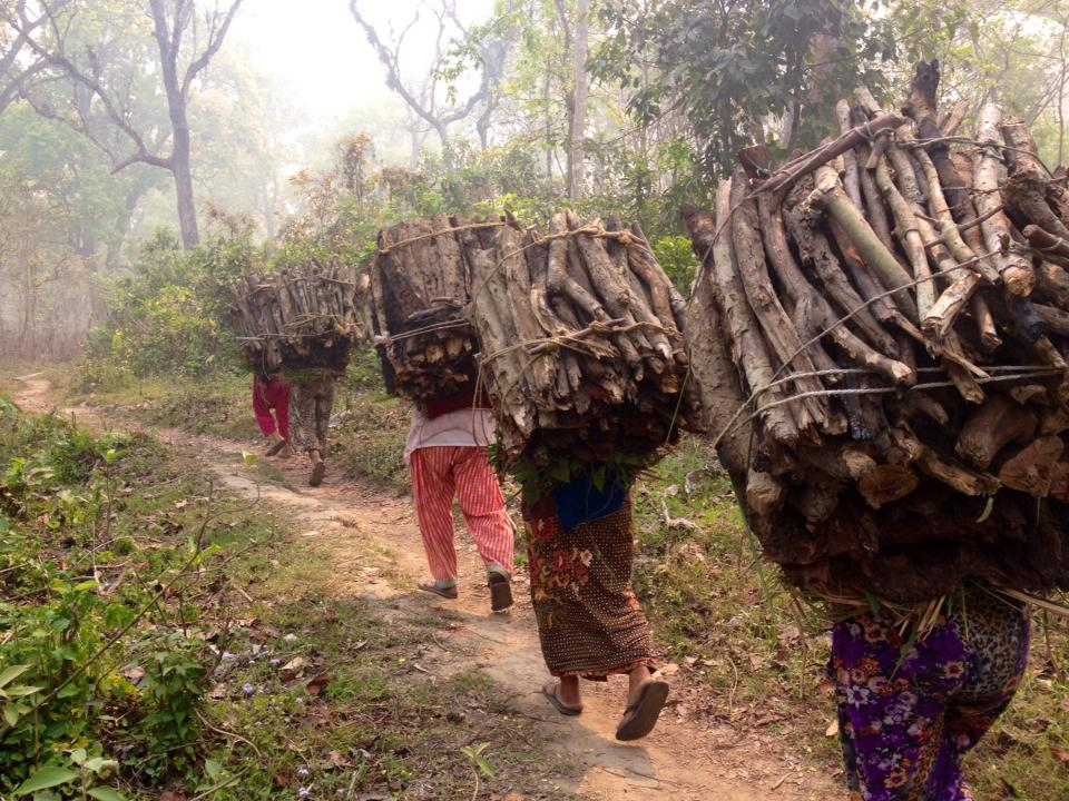 Workers in Chitwan