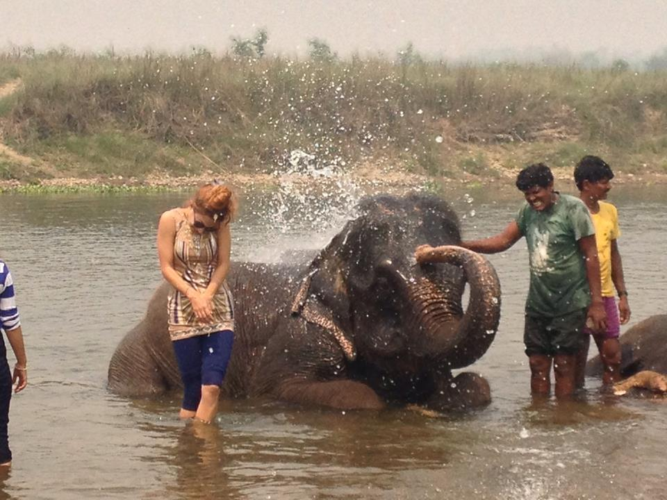 Elephant giving me a bath