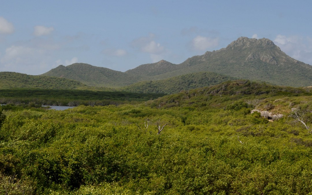 The National Parks of the Caribbean